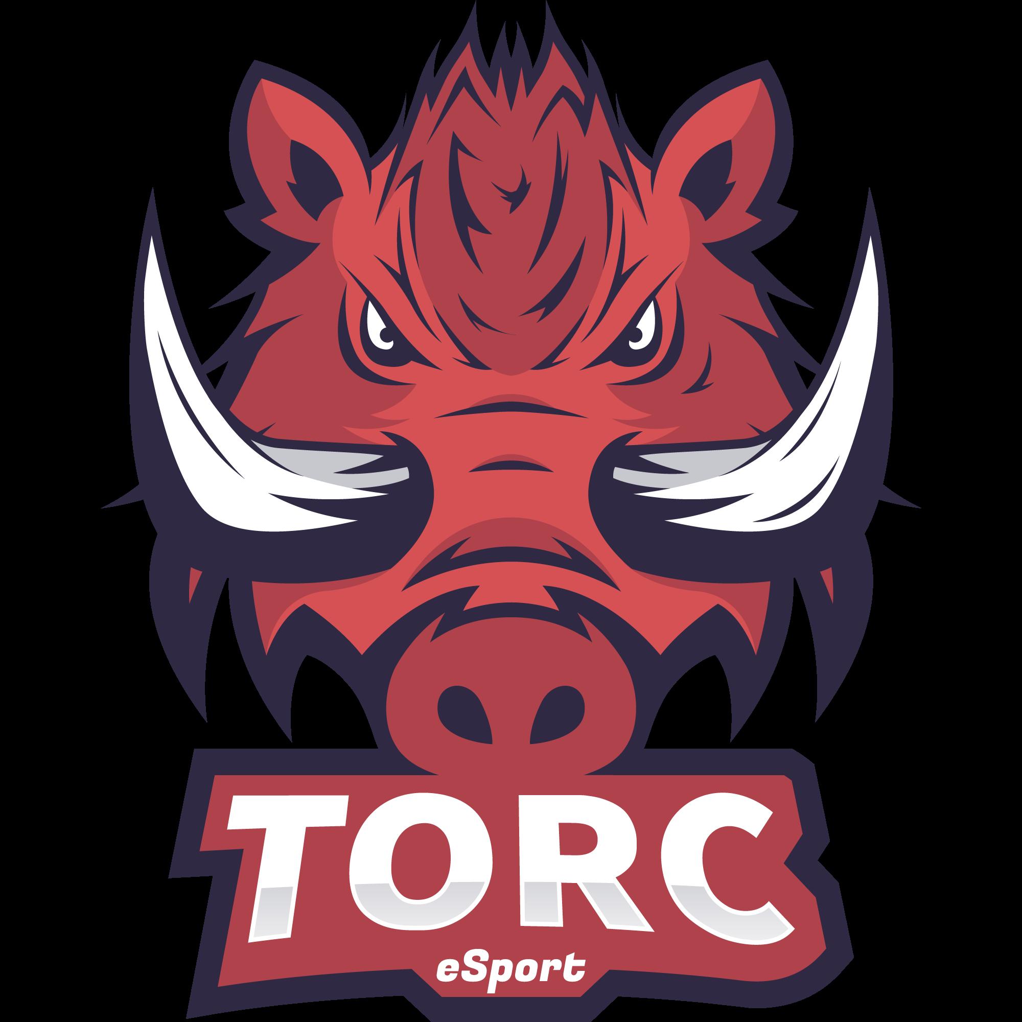 Torc Esport Sponsor NewGo