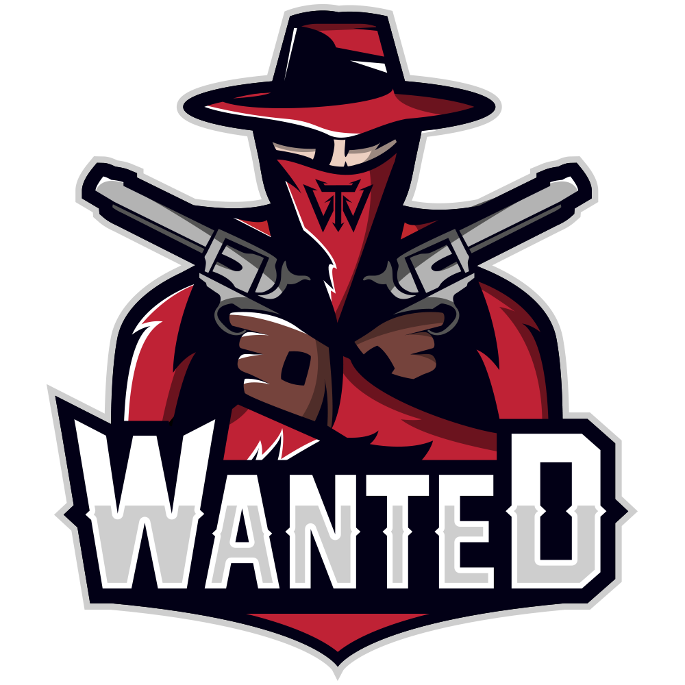 Wanted Esport sponsoring NewGo Travel
