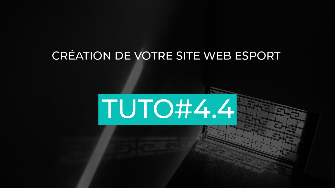 article-contenu-site-web-esport