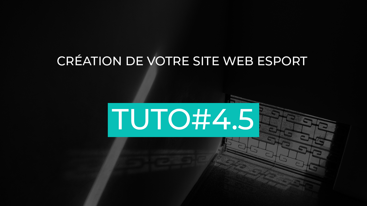 tuto site web esport plugins